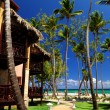 Tropical resort on oceshore — Foto de stock #4635509