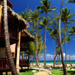 Tropical resort on oceshore — Stock fotografie #4635509