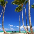 Sandy beach on Caribbean resort — Stock Photo