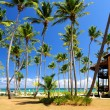 Foto de Stock  : Tropical resort