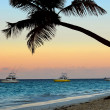 Tropical beach at sunset — Stock fotografie