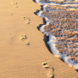 Tropical beach with footprints — Stock Photo #4636032
