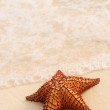 Starfish and ocean wave — Stock Photo