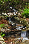Creek with waterfalls — Stock Photo