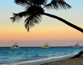 Tropical beach at sunset — Foto Stock