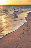 Footprints on sandy beach at sunrise — Stock Photo