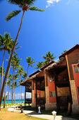 Tropical resort on ocean shore — Stock Photo