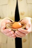 Manos sosteniendo nido con huevo — Foto de Stock