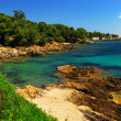 Mediterranean coast of French Riviera — Stock Photo #4641782