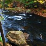 Fall river landscape — Stock Photo #4641999