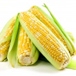 Corn ears on white background - Foto Stock
