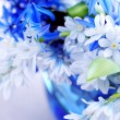 First spring flowers — Stock Photo
