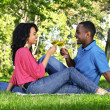 Royalty-Free Stock Photo: Happy couple having wine in park