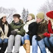 Group of friends outside in winter - Stock Photo
