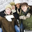 Group of friends outside in winter — Stock Photo #4718546