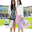 Stock Photo: Girlfriends shopping