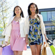 Young girlfriends shopping — Stock Photo #4718656