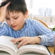 School boy studying - Stock Photo