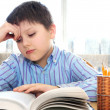 School boy studying — Stock Photo #4718791