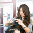 Stock Photo: Hair stylist working