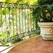 Plant on tiled Mexican veranda - Stock Photo