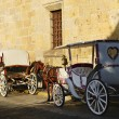 Horse drawn carriages in Guadalajara, Jalisco, Mexico — Stock Photo