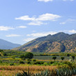 Landscape in Jalisco,  Mexico - Stock Photo
