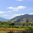 Landscape in Jalisco, Mexico — Stock Photo #4719567