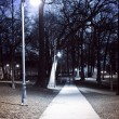 Park path at night - Stock Photo