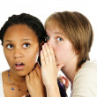 Two girlfriends gossiping — Stock Photo #4719670