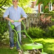 Man mowing lawn - Stock Photo