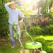 Man mowing lawn - Foto Stock
