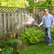 Stock Photo: Mwatering garden