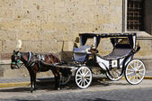 Horse drawn carriage in Guadalajara, Jalisco, Mexico — Stock Photo