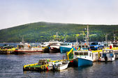 Barcos de pesca em terra nova — Foto Stock