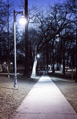 Park path at night — Stock Photo