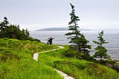 Father and children at Atlantic coast in Newfoundland — Stock Photo