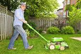 Muž sečení trávníku — Stock fotografie