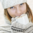 Winter girl — Stock Photo #4720043