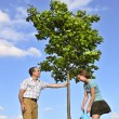 Planting a tree — Stock Photo #4720096
