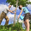 Planting a tree — Stock Photo #4720098
