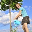Girl watering a tree — Stock Photo #4720099