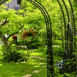 Lush green garden — Stock Photo #4720364