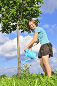 Girl watering a tree — Stock Photo