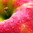 Red apple — Stockfoto #4824211