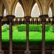 Mont Saint Michel cloister garden — Stock Photo #4824417