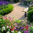Formal garden — Stock Photo