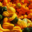 Pumpkins and gourds - Foto Stock
