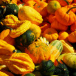 Pumpkins and gourds - Photo