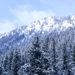 Winter mountain — Stock Photo